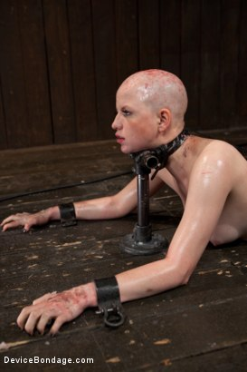 bdsm Shaved watching otngagged
