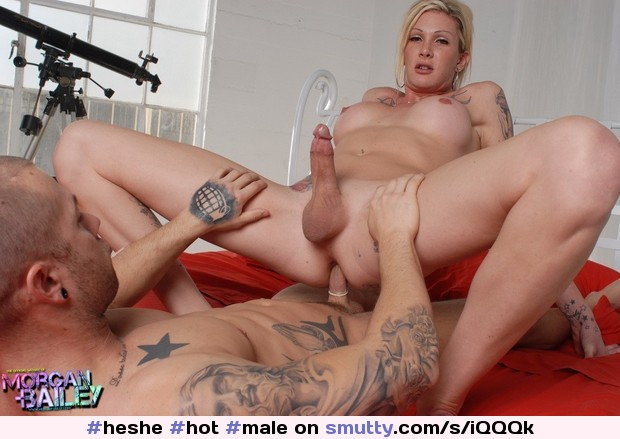 Adult Images Preggo pissing torture first time